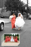 Contact us for Funny Wedding Photography.